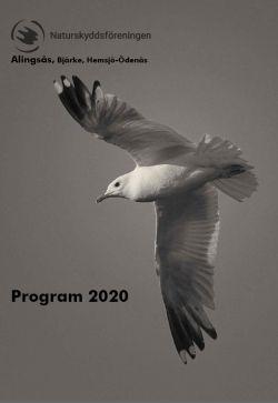 Program2020